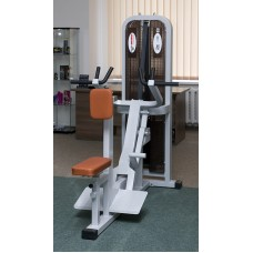 Iron Beast Professional Line Vertical Seated Row