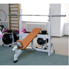 Iron Beast Professional Line Incline Bench Press