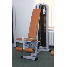 Iron Beast Professional Line Leg Extension